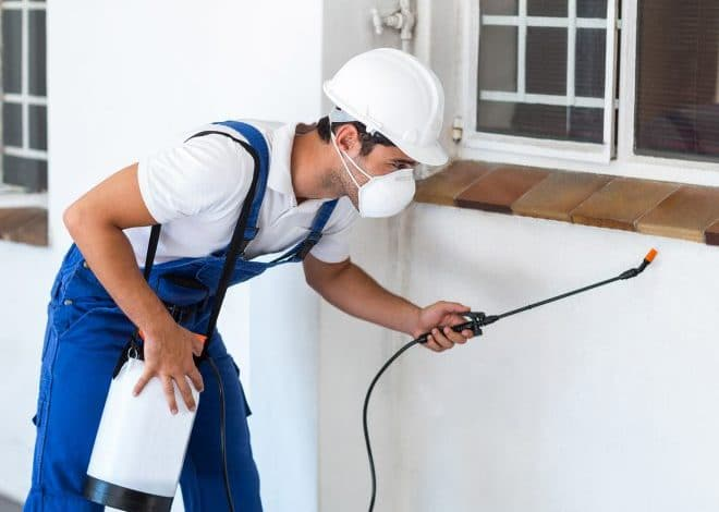 wollongong pest control